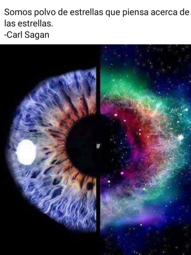 Carl Sagan Frases On Twitter Carlsagan