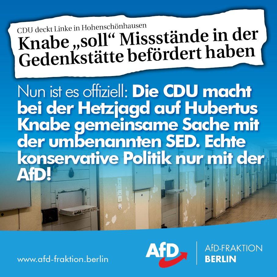 Afd Fraktion Berlin On Twitter Juristische Grundsätze Wie