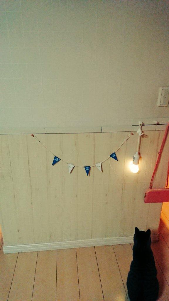 test ツイッターメディア - キッキンの壁が猫の爪痕多くなってきたのでプチDIY?? 木目柄のリメイクシートを貼って上に白く塗った木材を貼っただけだけど可愛くなりました?? この電球は停電の時役に立ったのでもう1つ購入。すべて100均! #プチDIY  #セリア #100均 https://t.co/4wJtn83PD3