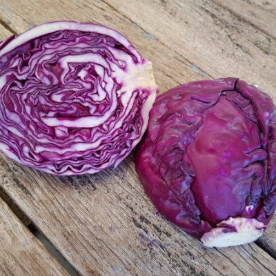 Biodynamic Veggies for Autumn Cooking🍲 - and warming recipes for gorgeous seasonal cabbage https://t.co/GIlw0qaNvk https://t.co/a2oKHNOzbR