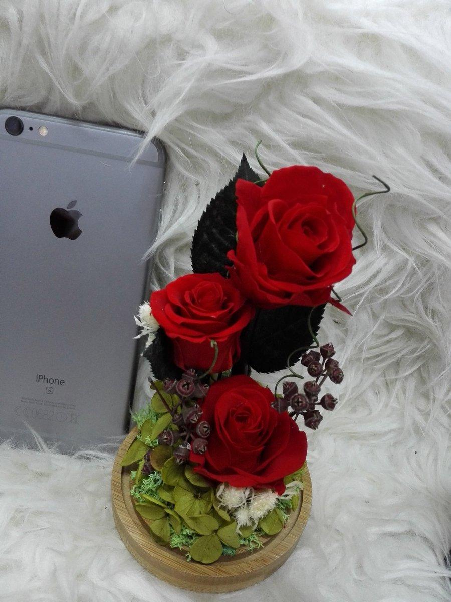 الورد الطبيعي S Z T1 Twitter