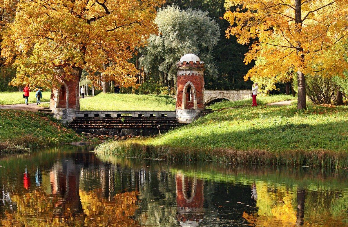 Фото екатерининский парк скамейки город пушкин
