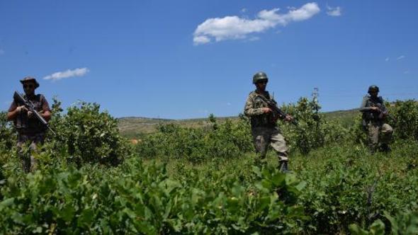 Emniyet'in uyuşturucu raporunda korkunç PKK ayrıntısı https://t.co/eztG2HeO6q https://t.co/vcfEHgjol1