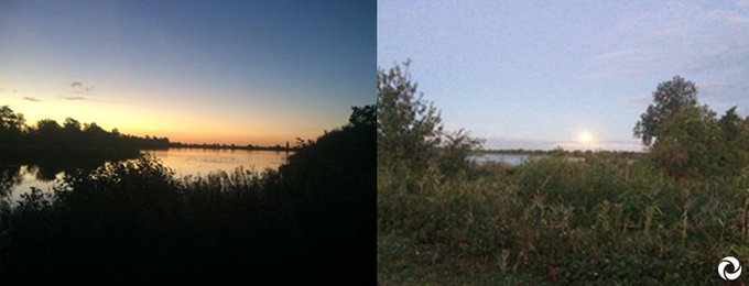 Onze boswachter Nico om 07:00 uur bij de #Waterleidingplas: 'Goedemorgen, zon op, maan onder!'  Je kunt mee excursie in oktober als je het met eigen ogen wilt zien :) https://t.co/sKfaTqSPCr  #wandelen