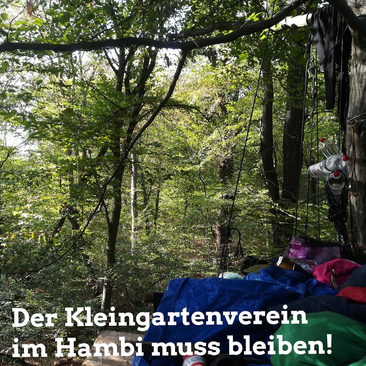 Kleingartenverein Hashtag On Twitter