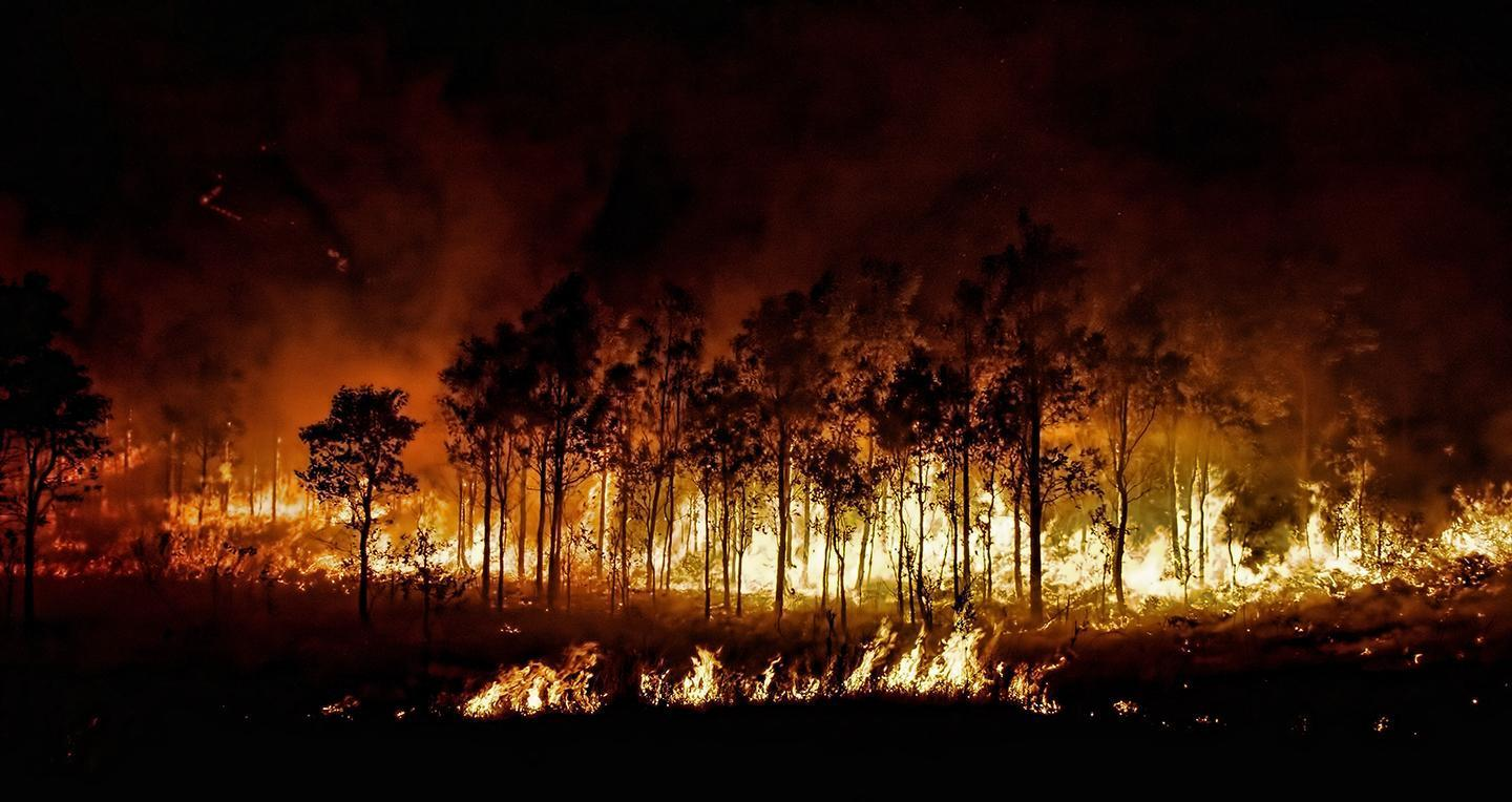 California Wildfires: Why controlled burns could save forests, and lives https://t.co/nLoQvHT7Os https://t.co/6o9dKi6OX7