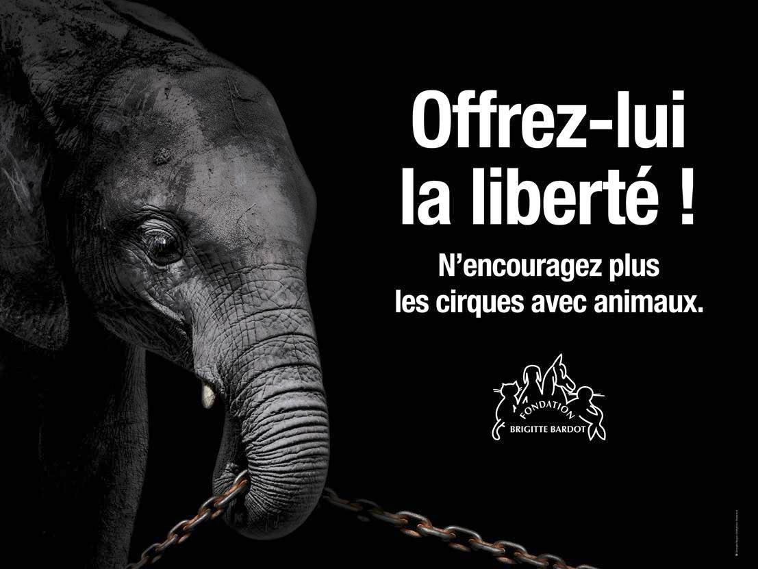 Offrons-leur la liberté, @FdeRugy vous avez le pouvoir de dire NON aux cirques avec animaux !