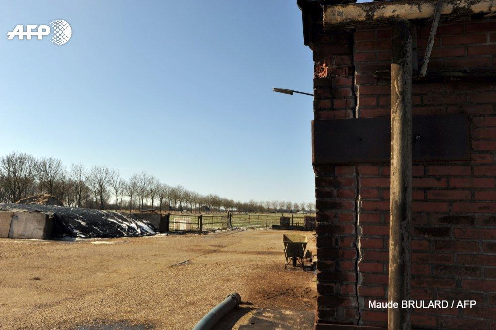 Les Pays-Bas confrontés à un véritable casse-tête: la gestion des dégâts de séismes à répétitions provoqués par l'extraction de gaz  https://t.co/8aPoUINu1X par @chavanou95 #AFP