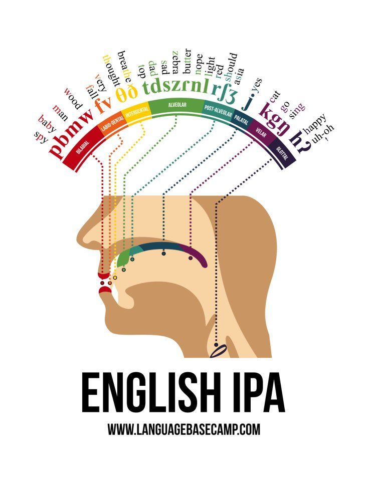 #Infographic shows where in your mouth different letters (in the English language) are formed. I had never seen something like his before. Really cool stuff! Source: buff.ly/2wqhnDs