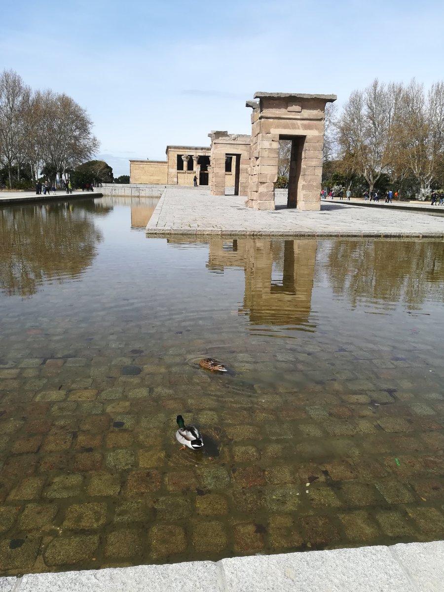 El #TemplodeDebod con más de 2000 años de antigüedad, fue regalado a #España por parte de #Egipto en 1968 #Madrid #Patitos