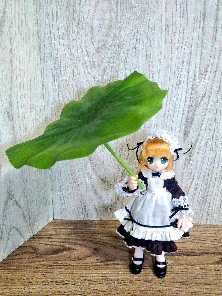 test ツイッターメディア - #ダイソー でGETした蓮の花の造花。 出来が良くて、特に葉っぱは雨の日の傘として #ドールに使える といいなぁと。 (* ?? ?*  )  もう蓮は終わったけど、季節はまた巡る。来年が楽しみ??  #ドール小物 #100均大好き https://t.co/BAeeqMVyR3