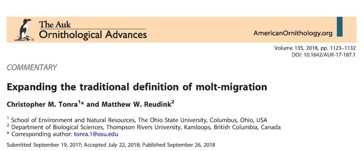 Check this new commentary in @AukJournal by myself & Matt Reudink, on #MoltMigration. Like #molt in general, this is a chronically understudied topic, now seeing increased attention from some fantastic researchers. #FullAnnualCycle #ornithology #migration goo.gl/iH6N3M