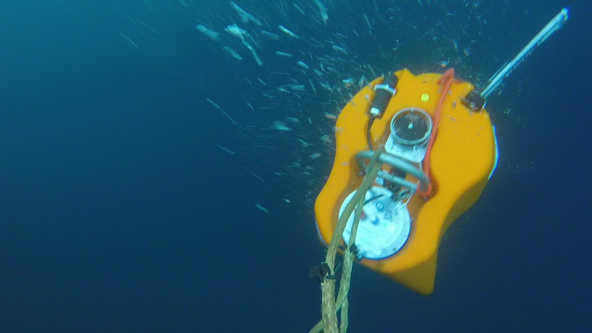 test Twitter Media - Namor (seismometer no. 12) was deployed by #seaseis. It was named after the Marvel superhero and the name was submitted by Glenstal Abbey School, Murroe, Co Limerick. We've also started video links with schools https://t.co/IqPo1as3fM #diasdiscovers #diasatsea https://t.co/4ST205C0At