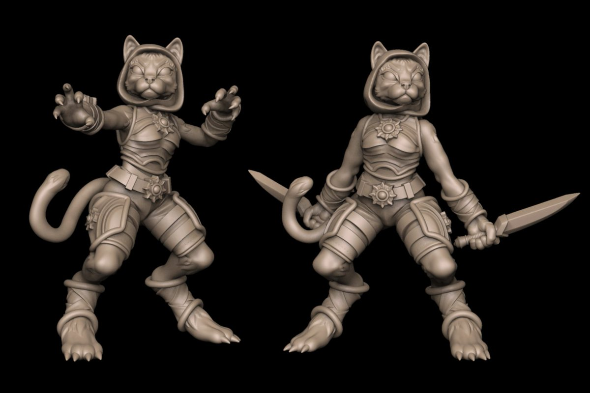 Russ Charles On Twitter Little More Work On My Tabaxi Monk Rogue Set Up Some Arm Swaps Gonna Get A Ranged Weapon Option In There Too Next Up Dragonborn Https T Co 3urahfzeul High quality tabaxi monk gifts and merchandise. tabaxi monk rogue