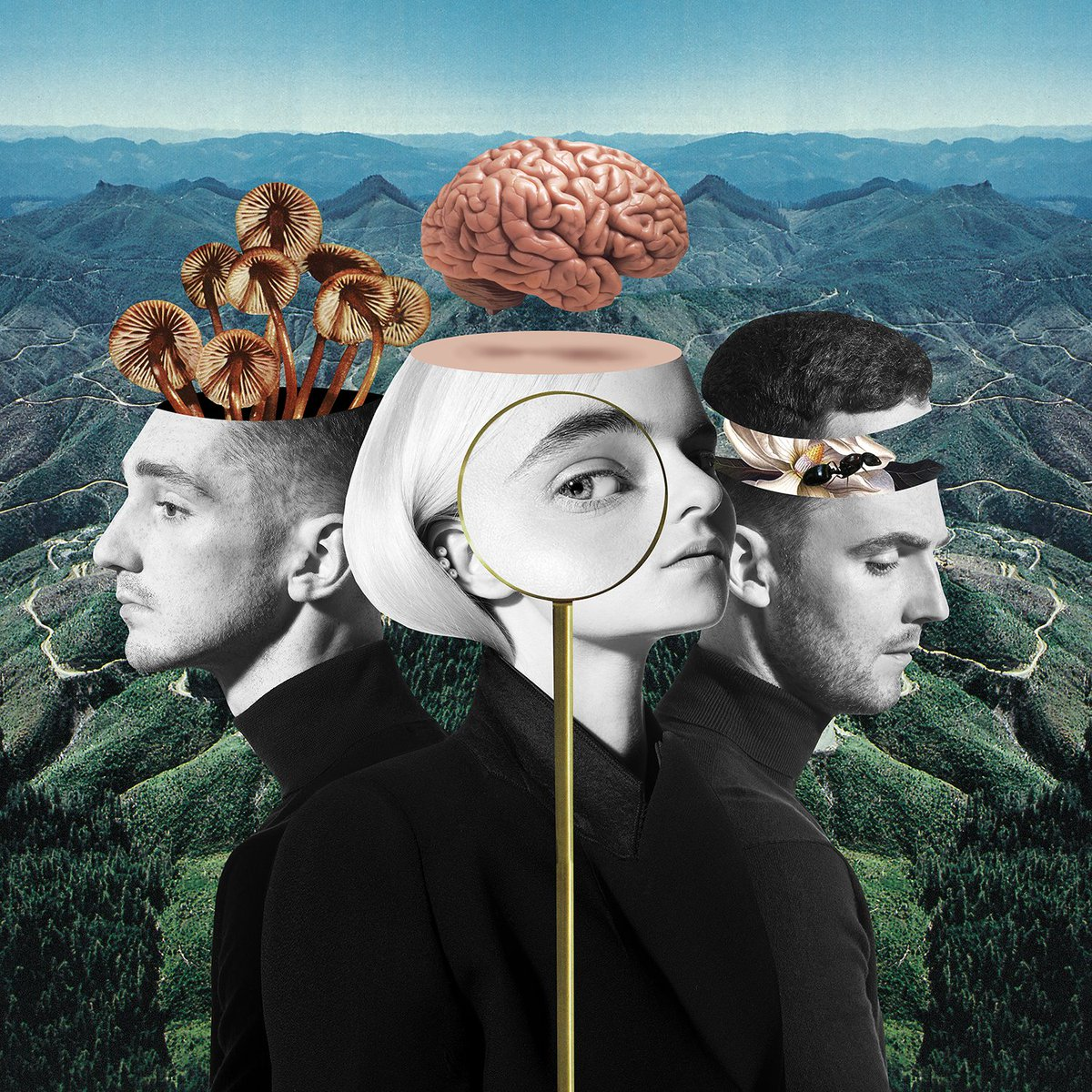 SURPRISE!! I'm so excited to be on the new @cleanbandit album! Can't wait for you to hear the song we've made together ❤️ Pre order here: https://t.co/fNz1w7aHQW
