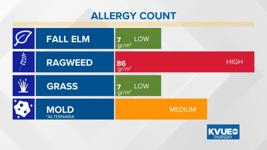 austin allergies allergyatx twitter