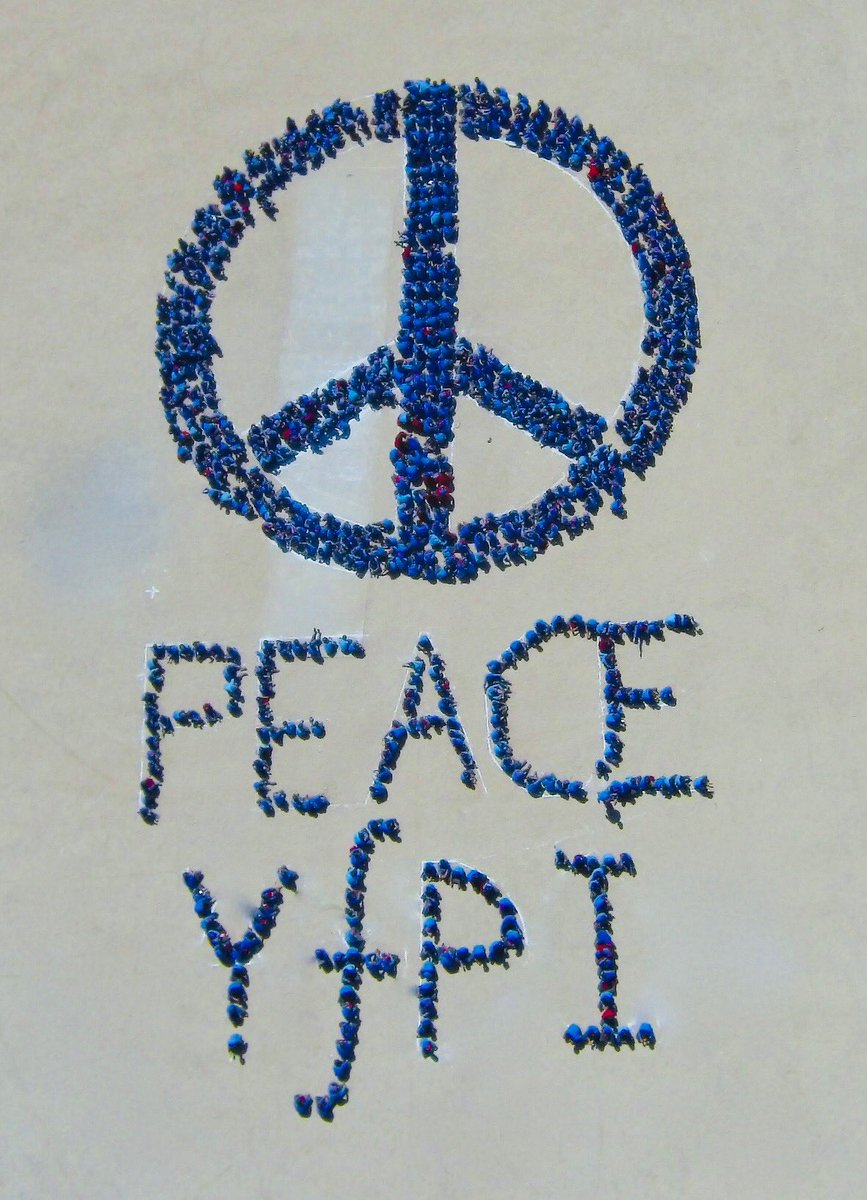 Youth For Peace Int Yfpeacei Twitter