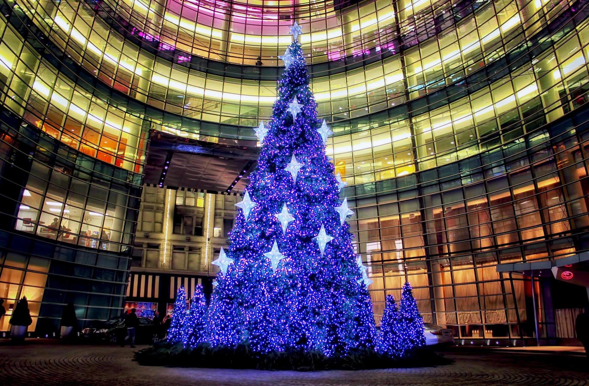 путаете картинки самые красивые елки на новый год хоть