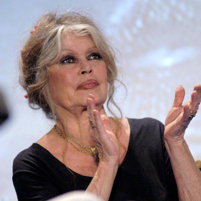 Happy Birthday dear Brigitte Bardot!