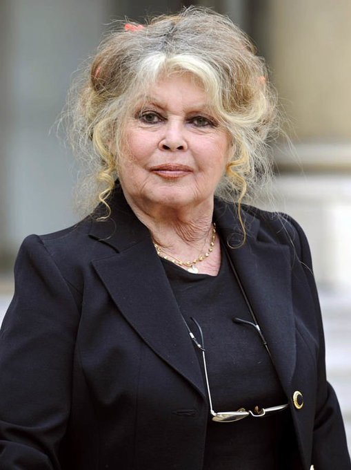 HAPPY BIRTHDAY BRIGITTE BARDOT Style Icon, And Animal Rights activist Is 84 Today.