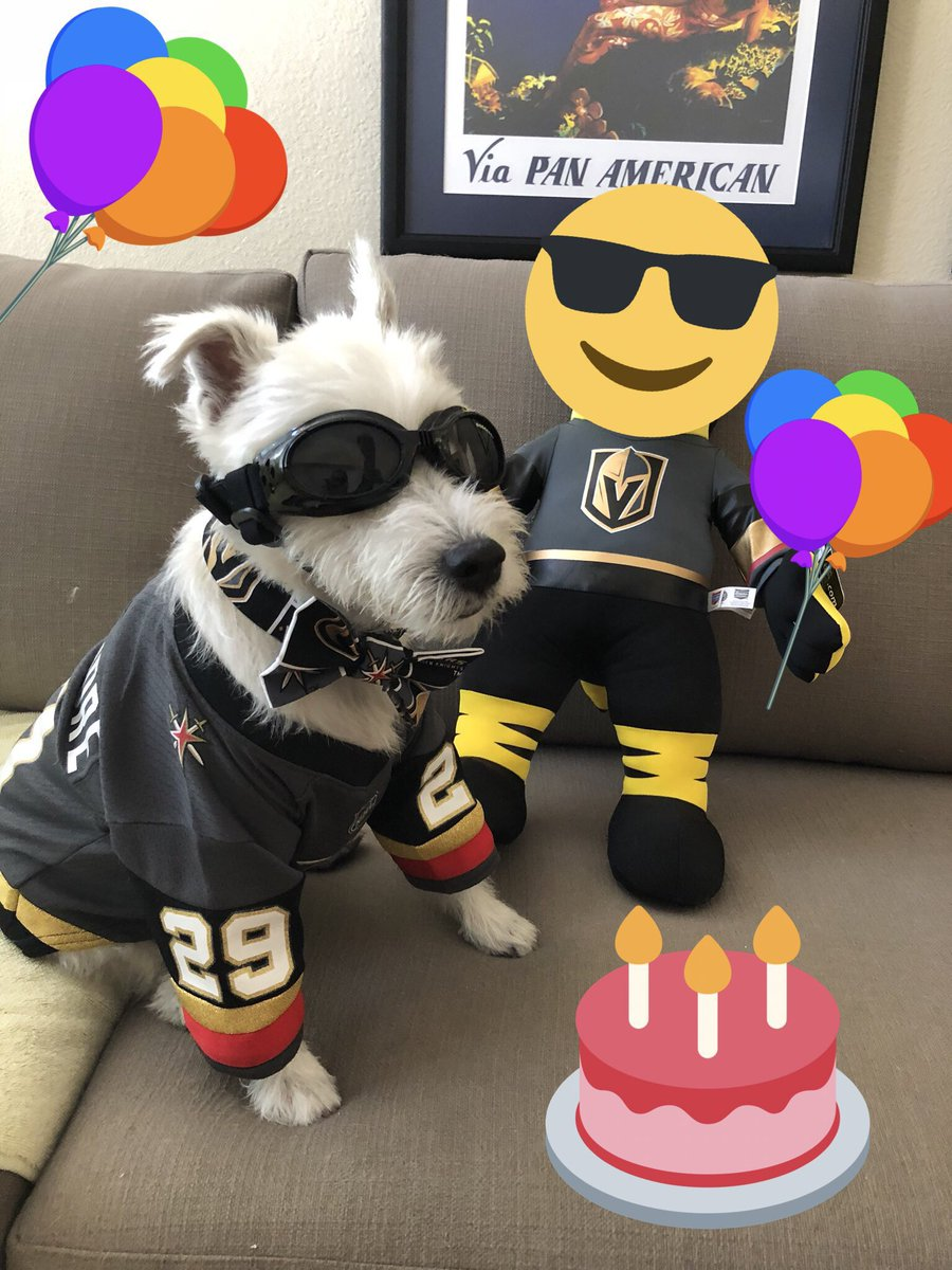 Bark Andre Furry On Twitter Happy Birthday Be Cool