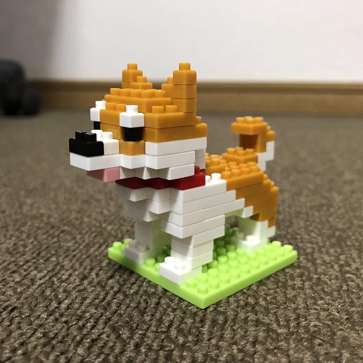 test ツイッターメディア - ダイソーのプチブロック柴犬。 100円ですごくかわいいww #ダイソー #柴犬 https://t.co/d38UDTBEgu