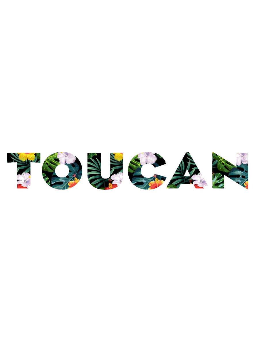 TOUCAN (@TOUCANBand)   Twitter