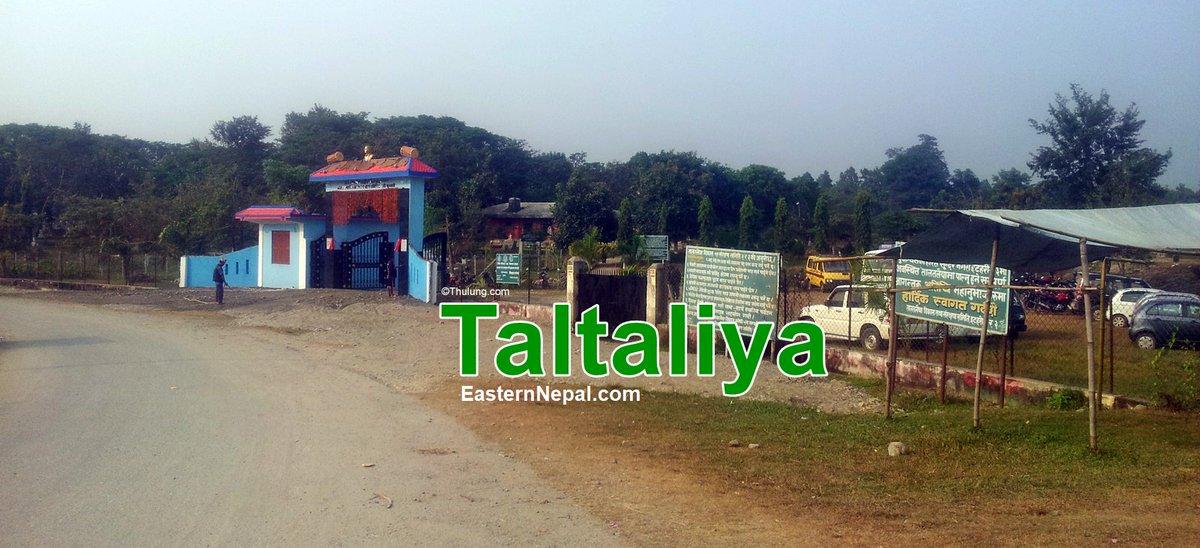 Taltaliya
