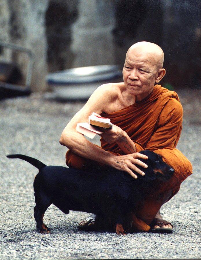 Image result for พระธรรมวิสุทธิมงคล (บัว ญาณสมฺปนฺโน)