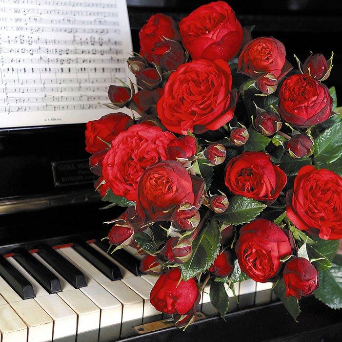 Спасибо, музыкальные открытки цветы добрый вечер