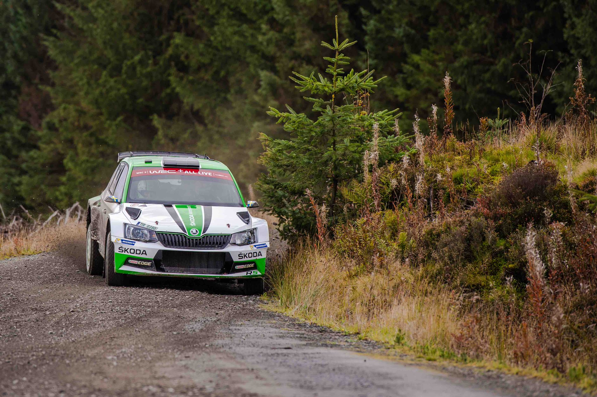 Rally Gales 2018 Doagj8SXsAAzML1