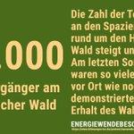 Immer mehr Menschen nehmen an den Spaziergängen rund um den #HambacherWald teil. Das Eintreten für #Klimaschutz und den Schutz unserer natürlichen Lebensgrundlagen wird zu einer breiten Bewegung. Am 6.10. wird erneut demonstriert. #kohlefrei #energiewendebeschleunigen
