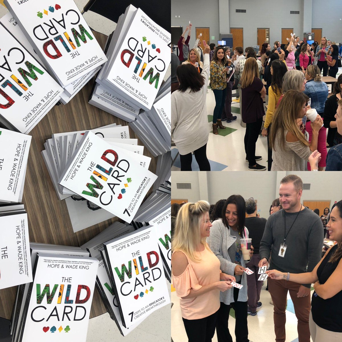 the wild card book study