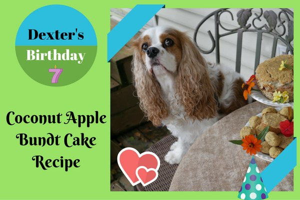 MakeitMonday Homemade Healthy Birthday Cake Recipe For Dogs Coconut And Apple Dog Healthydogtreats Healthydogs Realfoodfordogs