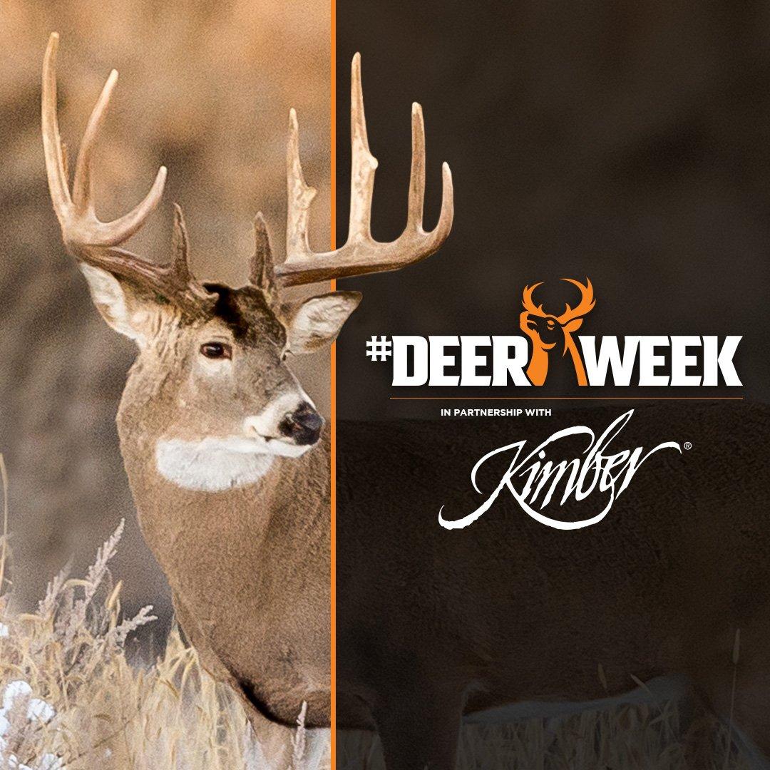 Deer Week (@DeerWeek) | Twitter
