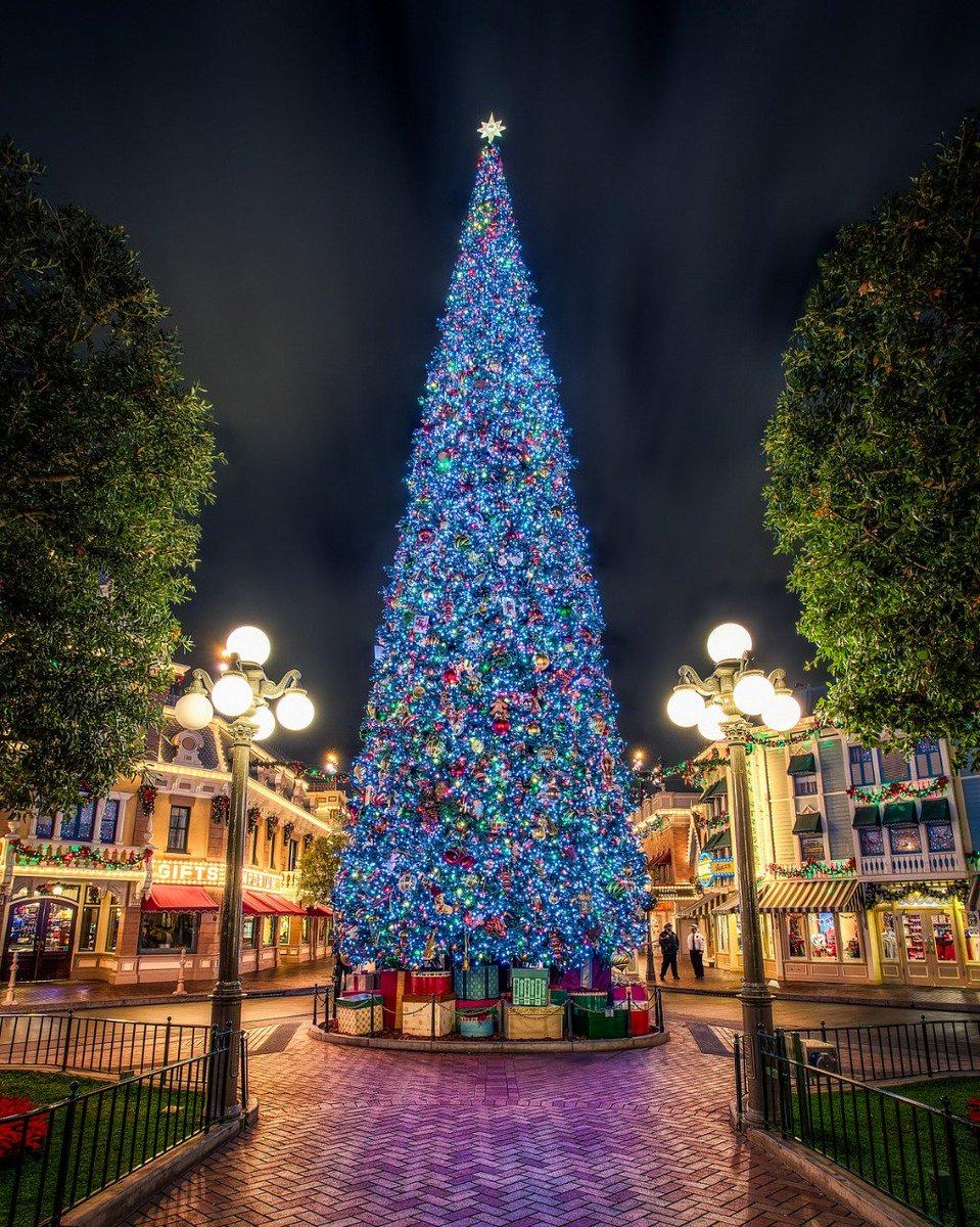 Картинки с большой новогодней елкой