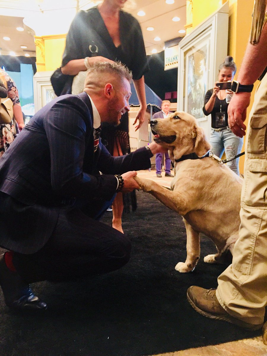 """IDK What To Do With All The Feelings I Have About Tom Hardy Shaking Hands With A Security Dog At The """"Venom"""" Premiere"""