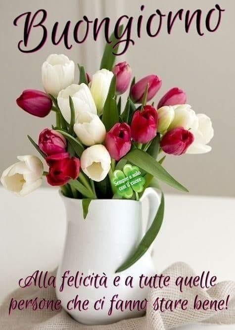 Maria Assunta On Twitter Buongiorno Anna E Tutti Sereno Martedì