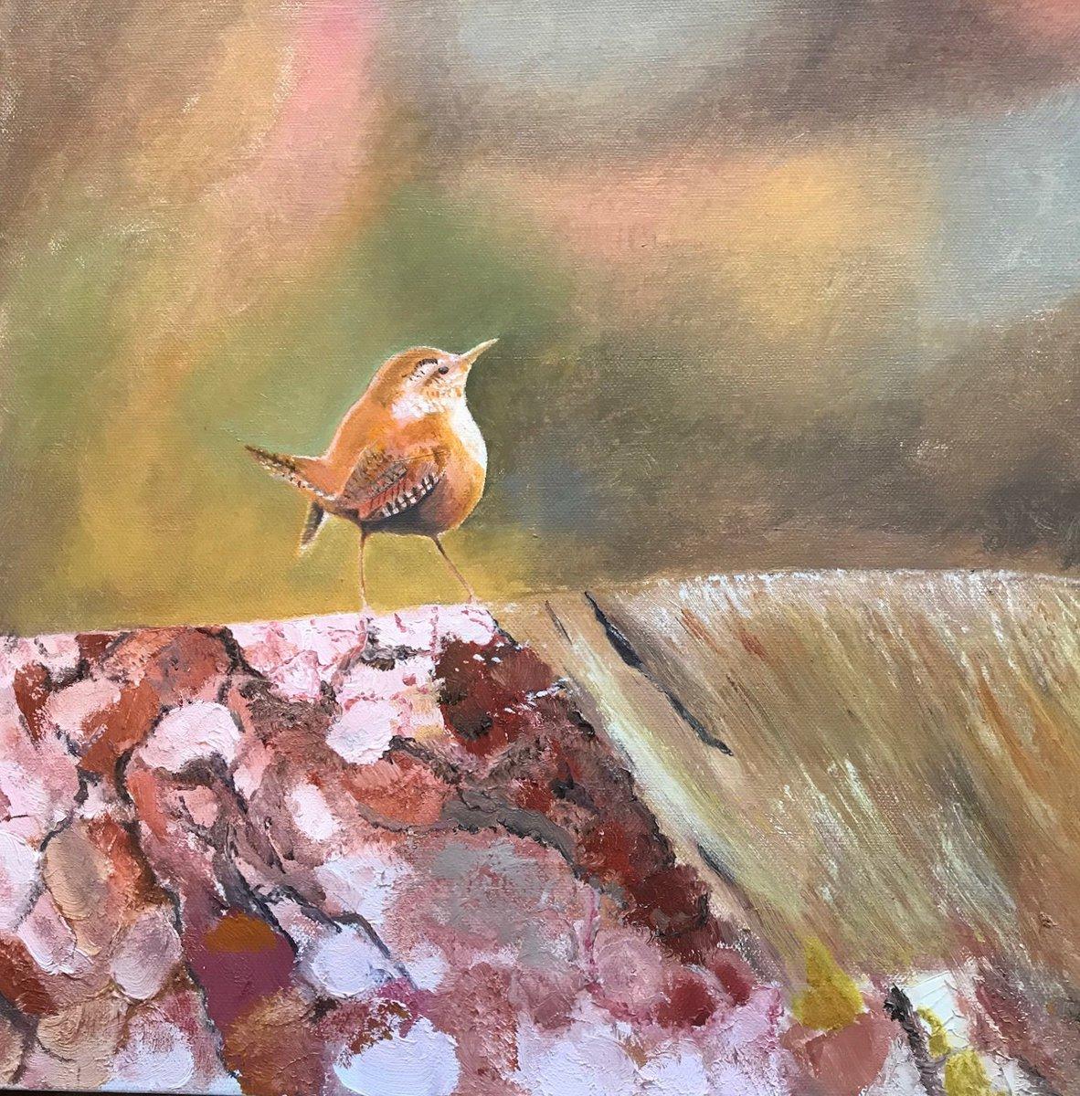 Janet Purves On Twitter Wren Art Cards 4 Bird Greeting Cards