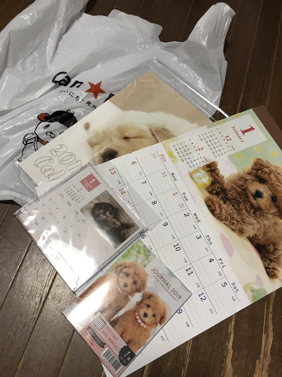 test ツイッターメディア - 10月になると 100円ショップで 来年のカレンダー売り出すから 恒例の犬カレンダー買ってみた´???`?? #キャンドゥ #犬がいなくなった家のあるある https://t.co/RDO5e8D5k1
