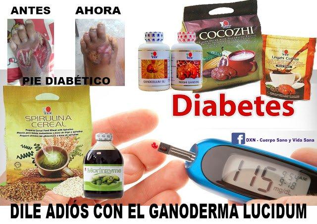 ganoderma y diabetes