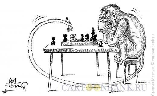 Карикатура Игры разума
