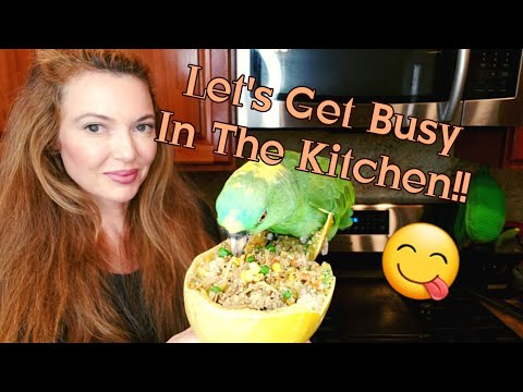 How To Cook Spaghetti Squash For You And Your Parrots |Part 1 https://t.co/kDP2clR2p2 https://t.co/7zWrapQwoI