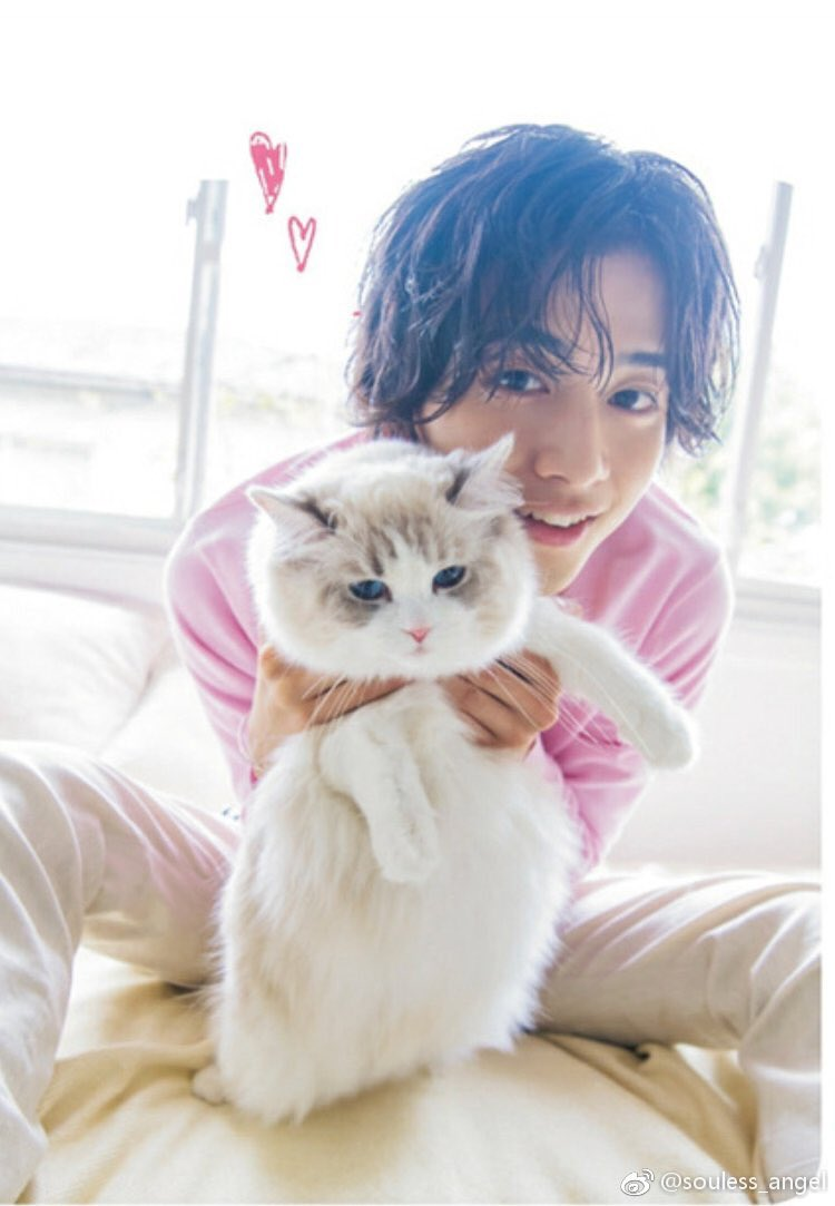 猫と飯島寛騎