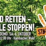Inzwischen ist klar: Die Demo am 6. Oktober am #HambacherWald wird richtig groß. Bitte plant unbedingt ausreichend Zeit für die Fahrt ein und kommt frühzeitig! Mehr Infos zur Anreise: https://t.co/tDgcUGBaWZ #kohlefrei #hambibleibt #hambacherforst #stopkohle
