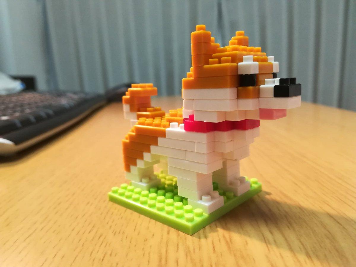 test ツイッターメディア - ちっちゃい犬が出来上がりました!手先の器用な旦那さんが、あっという間に作るんです(*ゝω・*)  #犬 #プチブロック #ダイソー https://t.co/Xk5W5AFXC7