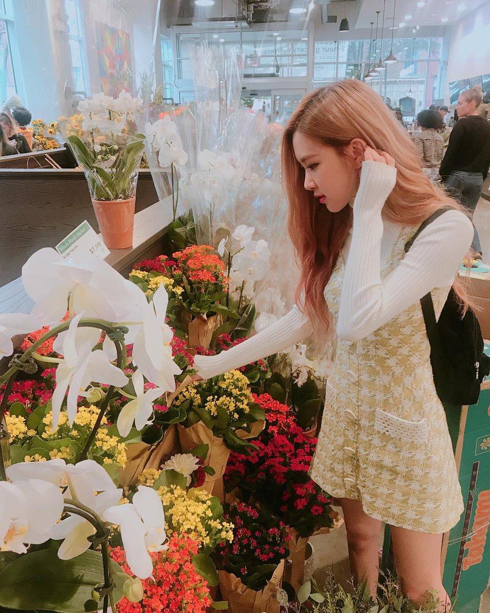 Apologise, but, fucks flower shop have
