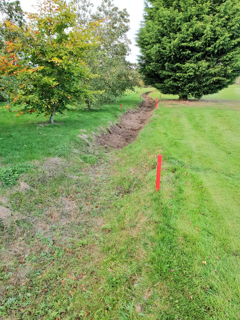 test Twitter Media - The ditch between the 4th and 5th has nearly been cleared now, hopefully allowing for better drainage through the winter months. Dave found an alarming number of balls in the ditch whilst clearing it 😂 https://t.co/CYbYVuAnFZ
