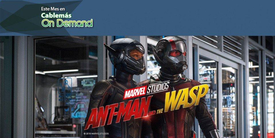 Scott deberá ponerse una vez más el traje de Ant-Man y junto con La Avíspa aprender a luchar en equipo para lograr develar secretos del pasado. ¡Réntala On Demand! https://t.co/YhjHhsRv8j