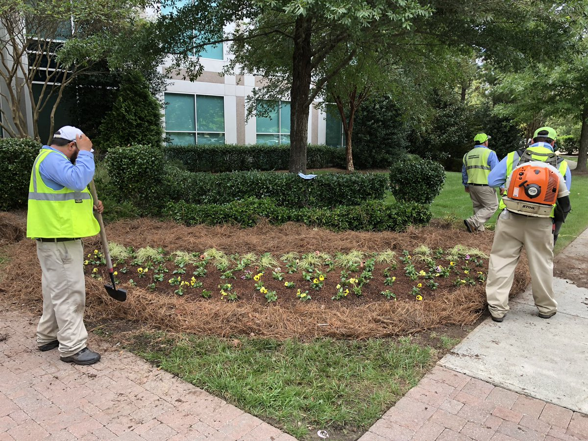 Bland Landscaping On Twitter Since We Created Branches Throughout North Carolina We Can Now Provide More Intimate Training For Our Employees With Smaller Groups Durham Branch Flower Training Winterannuals Wedignc Https T Co Pn1ck9ffic